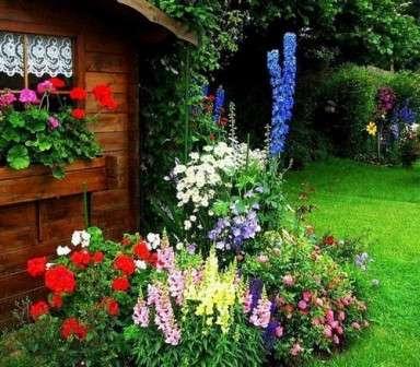Цветники и клумбы своими руками на даче, фото и схемы