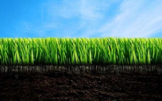 Улучшение почвы на садовом участке: анализ почв и способы улучшения