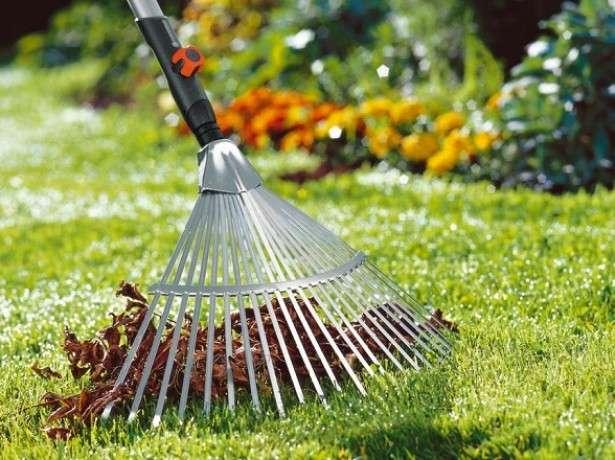 Как ухаживать за газоном осенью: рекомендации, советы, правила