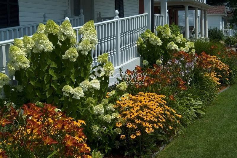 Как правильно ухаживать за цветником в начале лета