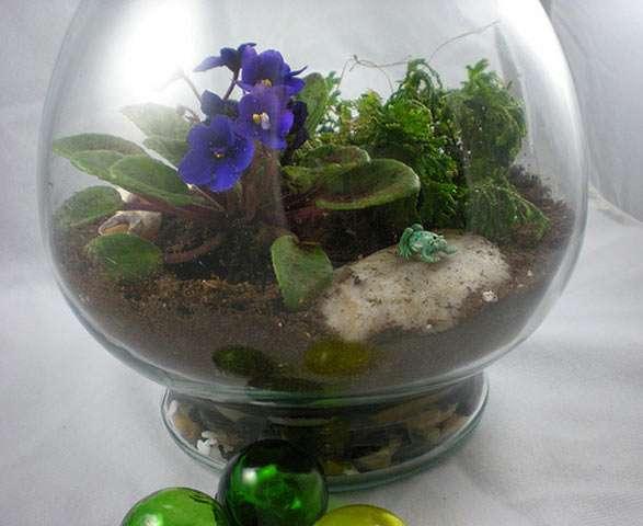 Как создать необычный комнатный сад: идеи, подбор цветов и горшка