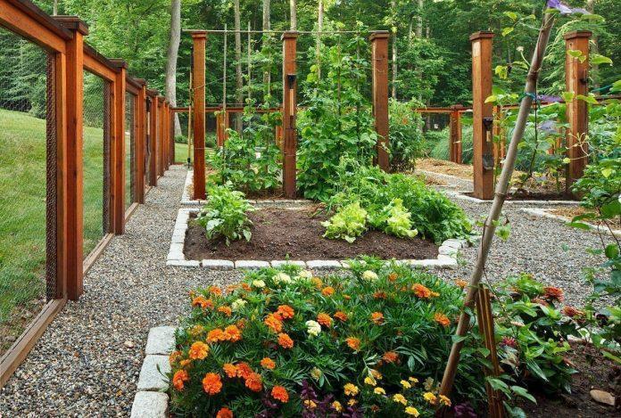 Лунный календарь огородника и садовода на 2019