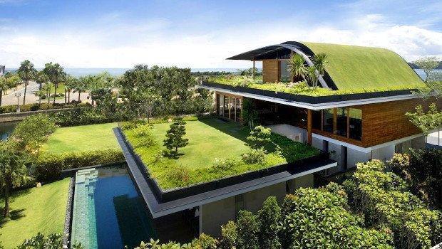 Сад на крыше - живой зеленый оазис на фоне городской среды