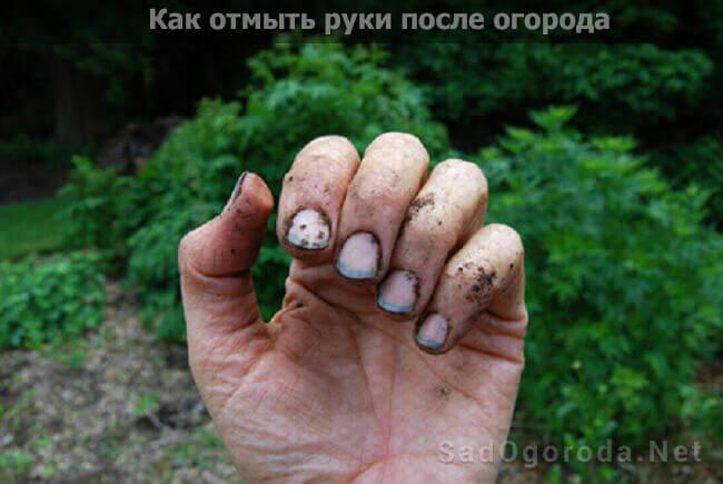 Как отмыть руки от грязи после огорода, очистить их от грязи