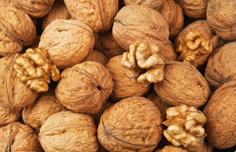 Грецкие орехи невозможно расколоть: особенности сорта или ошибки в уходе?