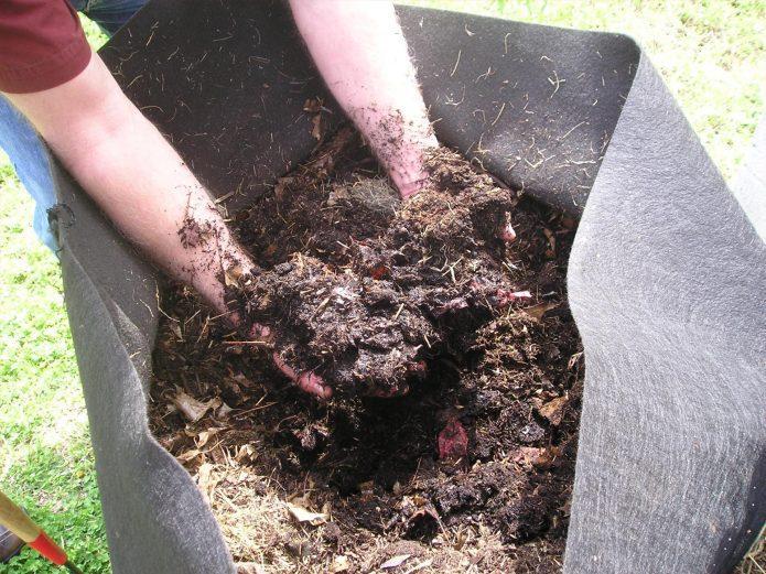 Каким бывает компост: ищем лучшее удобрение