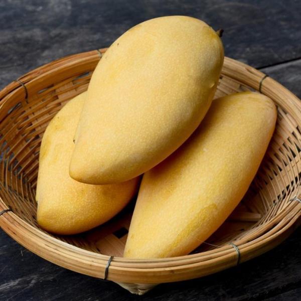 Манго: популярные сорта экзотического фрукта