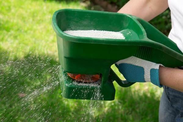 Мочевина: удобрение, применение на огороде - подробная инструкция