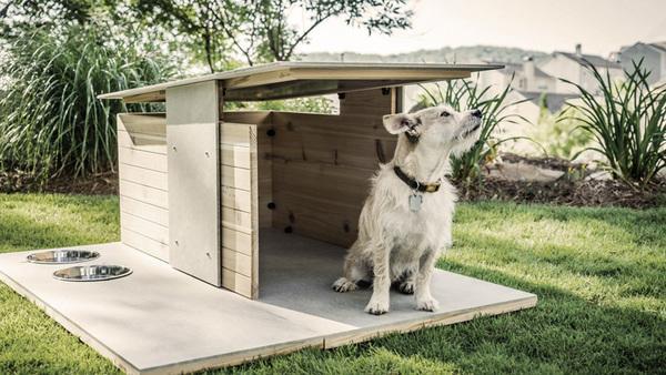 Удобная и функциональная будка для собаки