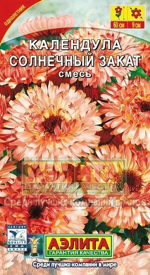 Календула - выращивание из семян, посадка и уход в открытом грунте, видео