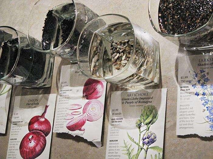 Как подготовить семена к посеву? Замачивание и обработка