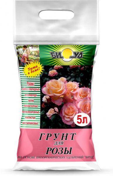 Керио – самая жёлтая чайно-гибридная роза