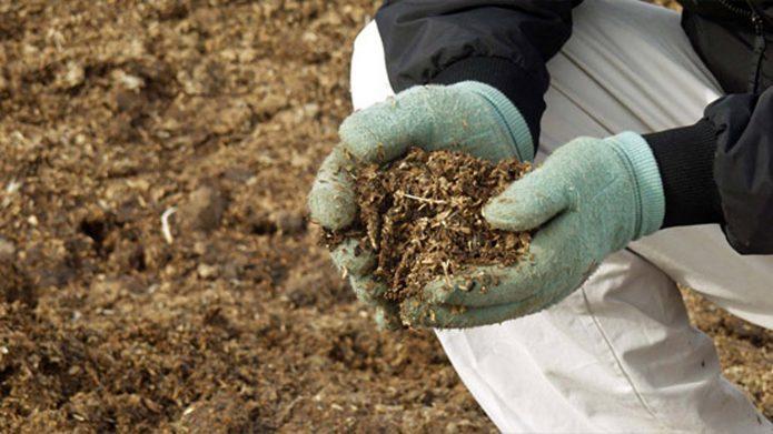 Копать нельзя бросать: о чем спорит традиционное и природное земледелие?