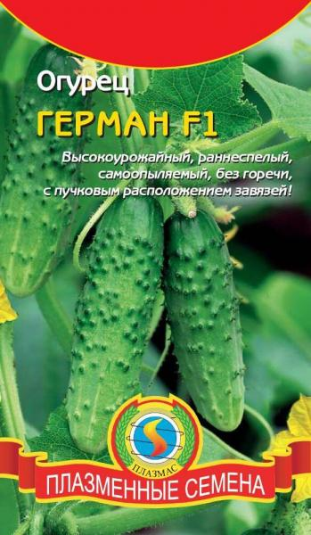 Лучшие высокоурожайные самоопыляемые сорта огурцов для открытого грунта