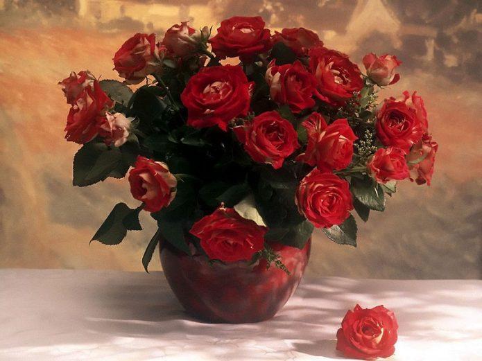 Виват королевам, или Как сохранить свежесть роз в вазе надолго