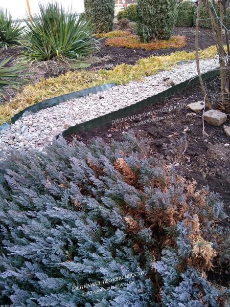 Бордюрная лента на садовом участке: мои варианты использования
