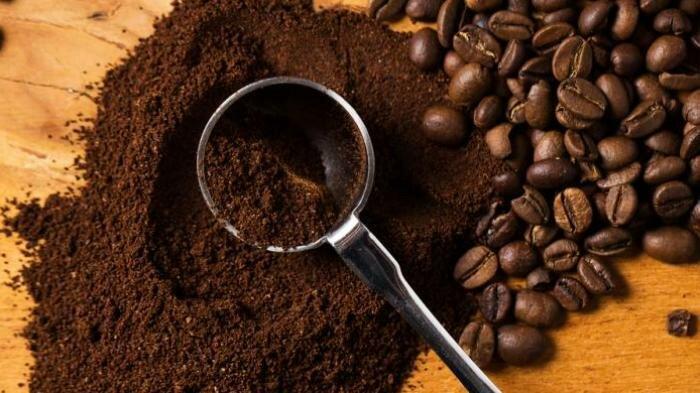 Кофе как удобрение в садоводстве