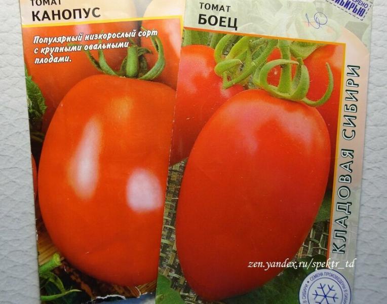 Скоро весна, поговорим о низкорослых сортах томатов.