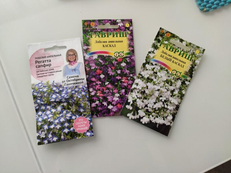 Вот какие я семена цветов купила