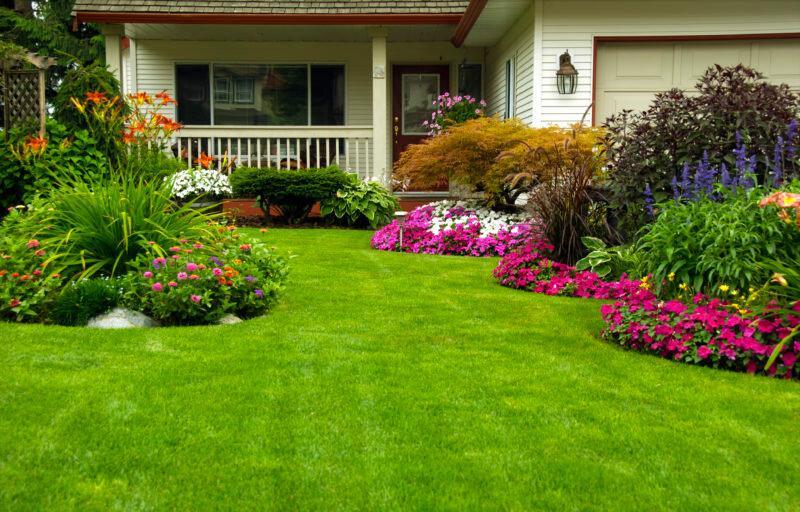 8 вещей, которые должны быть на даче ленивого садовода