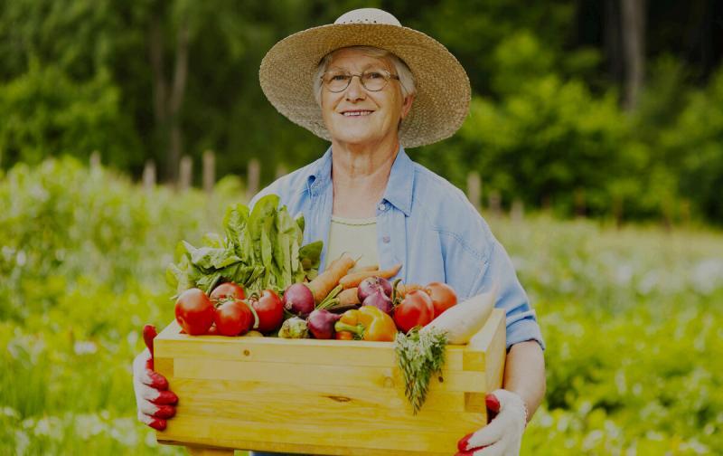 Гениальные хитрости моей бабушки, у которой не огород, а сказка.