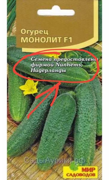Как правильно выбрать семена огурцов. Список проверенных сортов.