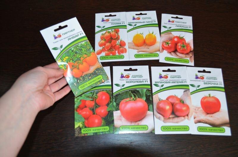 Мой обзор по томатам. Всхожесть и рост рассады