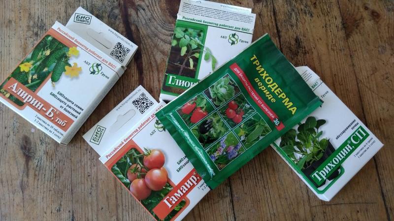 Опрыскивания, которые я делаю для защиты томатов от фитофторы.
