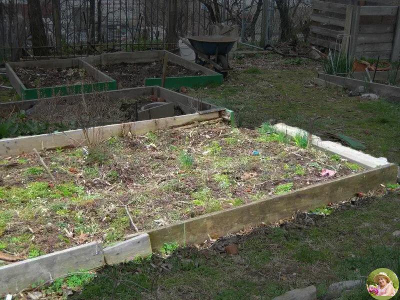 Перед тем, как сделать в огороде такую грядку - сто раз подумайте