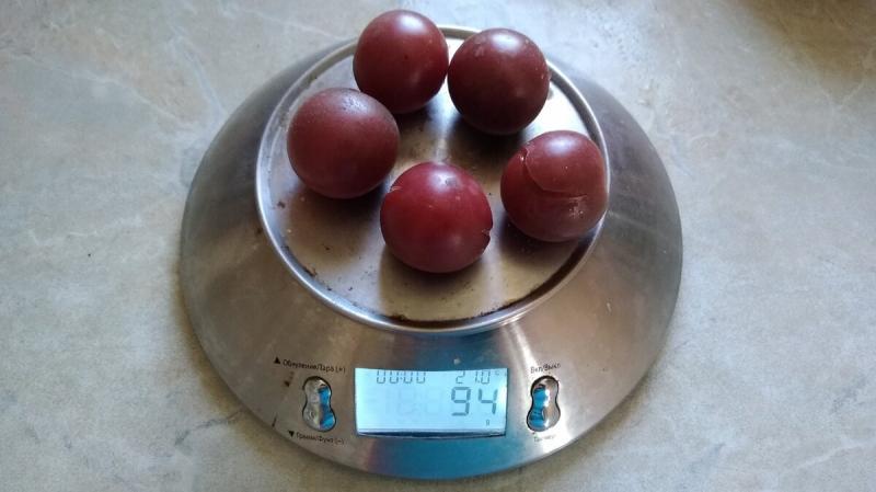 Посадила новые (для себя) сорта томатов. И вот что из них выросло