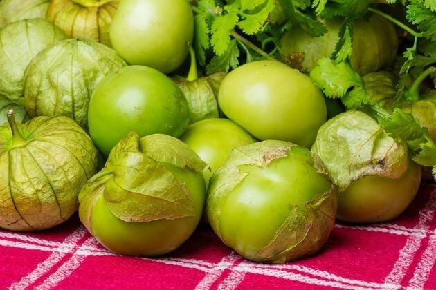 Физалис можно выращивать без рассады