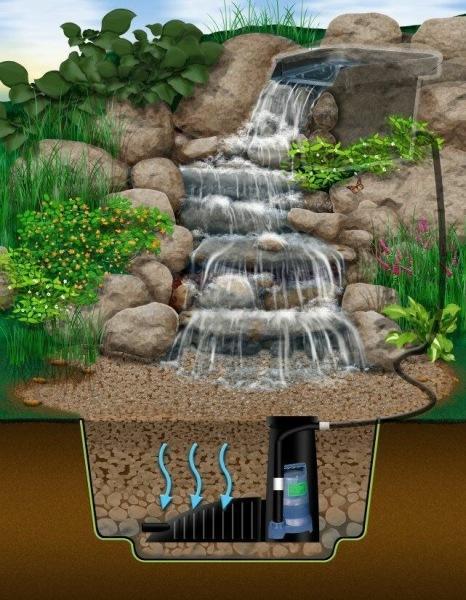 Озеленение дачного участка: как сделать красиво