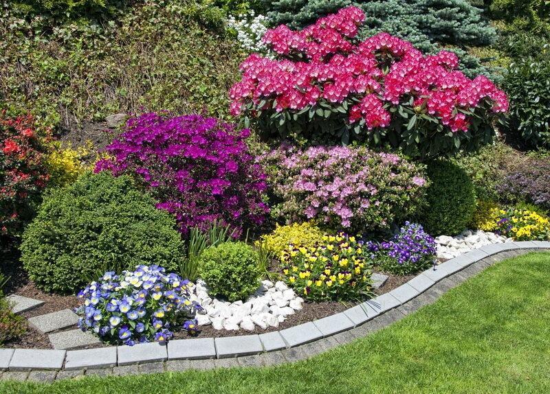10 доступных способов, позволяющих исправить некрасивый цветник