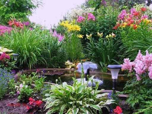 Водоем на даче: какие растения подойдут