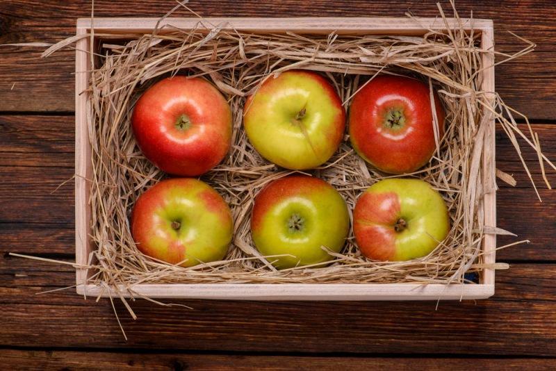 Яблоки: 6 способов консервирования