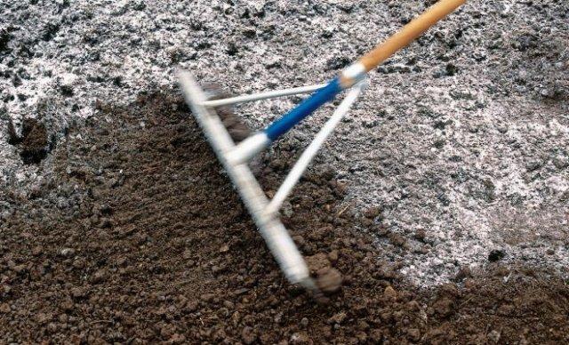 Как обработать почву осенью, чтобы избавиться от проволочника
